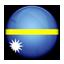 Flag of Nauru icon
