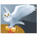 Bird Mail-128