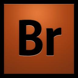 Adobe Bridge CS4