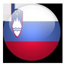 Slovenia Flag-128