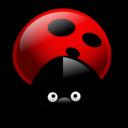 Ladybug-128