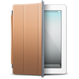 iPad 2 White brown cover