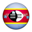 Flag of Swaziland icon