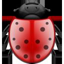 Bug-128