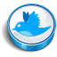 Twitter blue cooky Icon