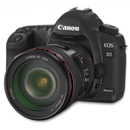 Canon 5D side