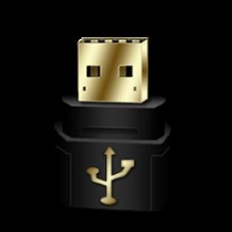 RemovableDisk Gold