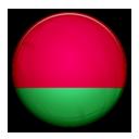 Flag of Belarus-128