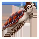 Turtle-128