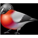 Bullfinch 2-128