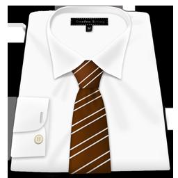 Shirt Brown Tie