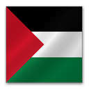 Palestine flag-128
