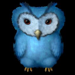 Bedwyr Bird