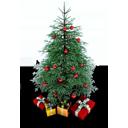 Xmas Tree-128