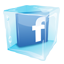 Facebook Ice Icon