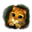 Cute Puss icon