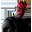 Star Wars Darth Maul Icon