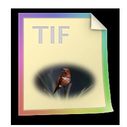 Tif files