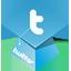 Twitter Hat icon