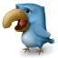 Angor Bird Icon