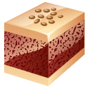 Nuts Cake-128