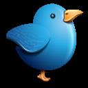 Twitter blue bird-128