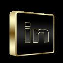 Linkedin Black and Gold-128