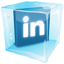 Linkedin Ice icon