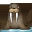 Walrus Icon