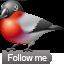 Bullfinch 1-64