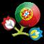 Euro 2012 Portugal Icon