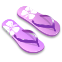 Purple slipper-128