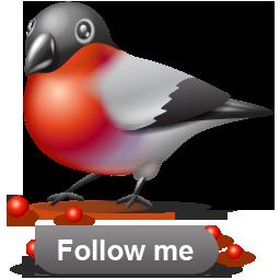 Bullfinch 1