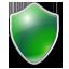 Shield green icon