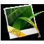 Jpeg Image icon