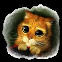 Cute Puss-128
