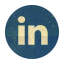 Retro Linkedin Rounded icon