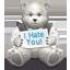 I Hate You-64