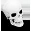 Dresden Skull icon