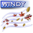 Windy-48