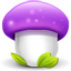 Purple Mushroom icon