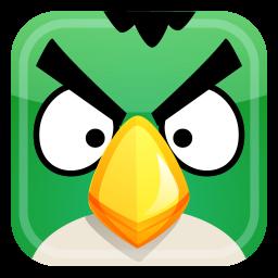 Angry Green Bird