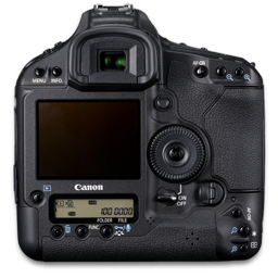Canon 1D back