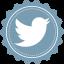 Twitter Vintage icon