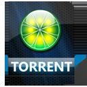 Torrent File-128
