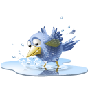Pool Bird