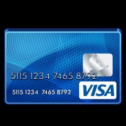 Visa Standard