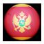 Flag of Montenegro Icon