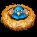 Twitter nest-128