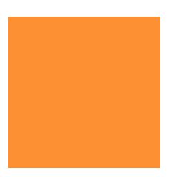 Illustrator orange